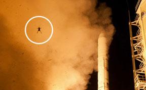 Wannabe Astronaut Frog Photobombs NASA Rocket Launch
