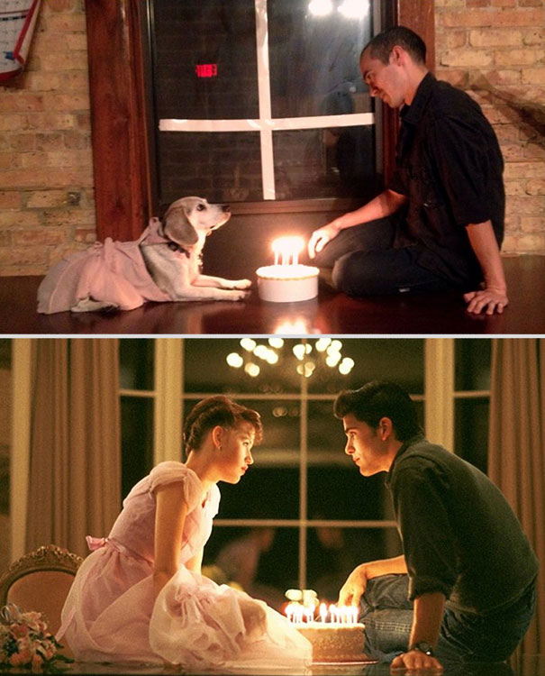 wrigley-at-the-movies-dog-reenacts-famous-movies-3