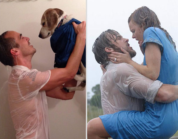wrigley-at-the-movies-dog-reenacts-famous-movies-5