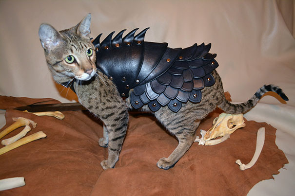 black-leather-cat-armor-schnabuble-3