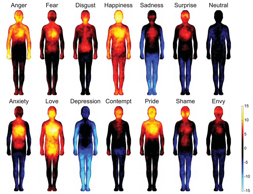 emotion-heatmap-body-atlas