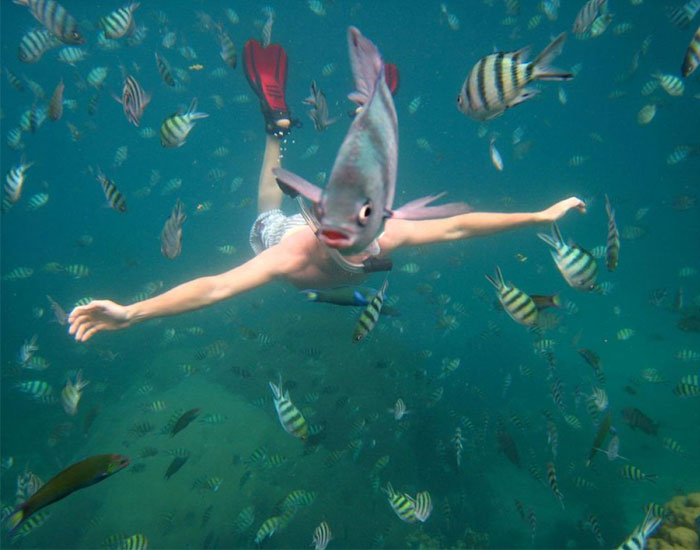 33 More Perfectly Timed Photos