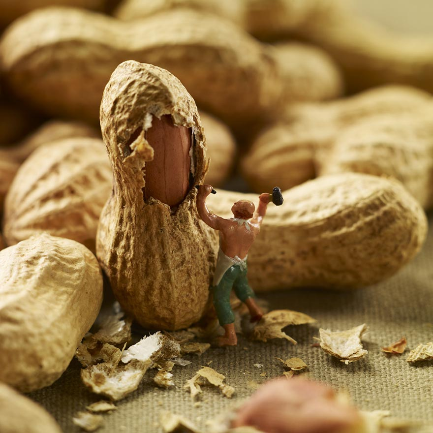 miniam-food-dioramas-pierre-javelle-akiko-ida-5