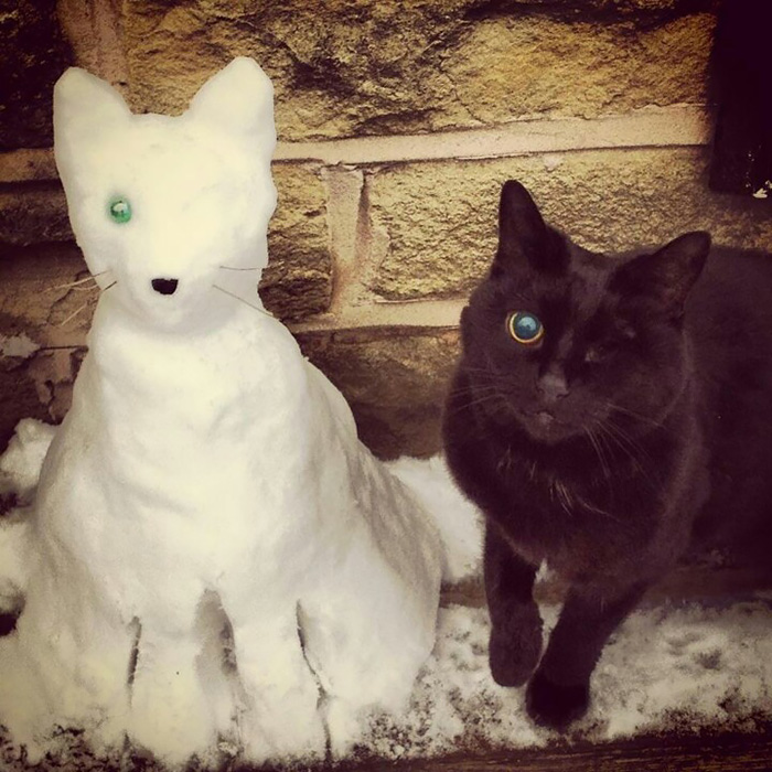 Snow Pets: People Are Turning Their Pets Into Snow Sculptures