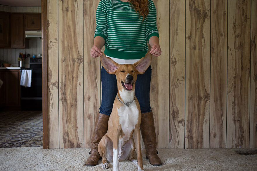 adopted-pets-why-we-rescue-theron-humphrey-16