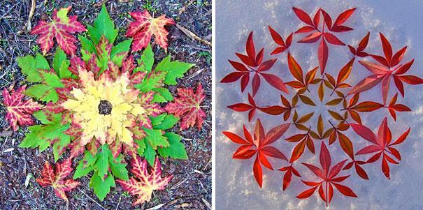 danmala-flower-mandala-kathy-klein-37