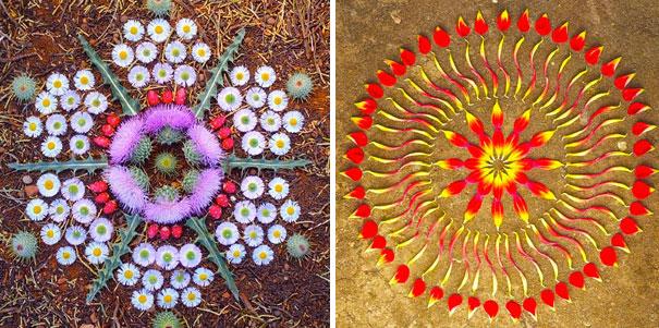 danmala-flower-mandala-kathy-klein-43