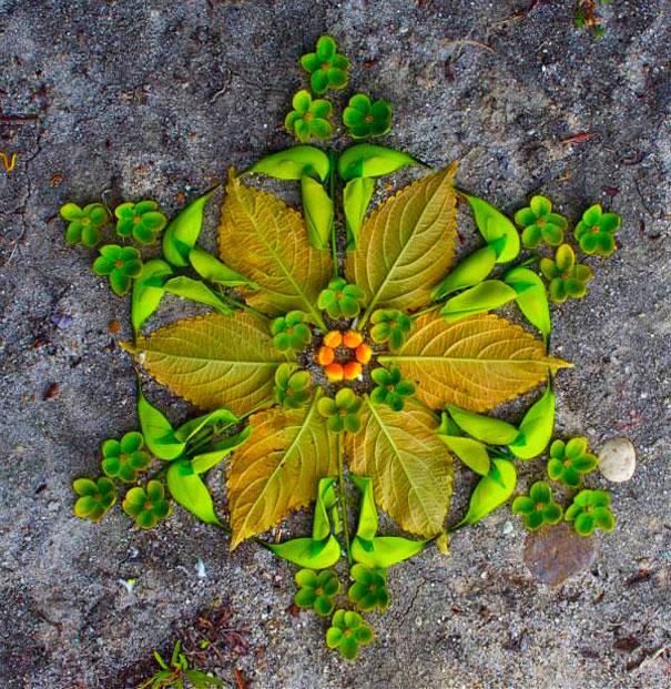 danmala-flower-mandala-kathy-klein-48