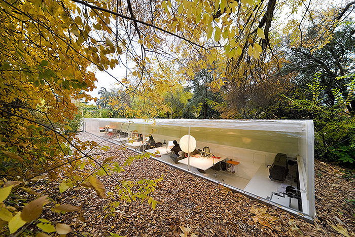 Office In Madrid Lets Employees Feel Like They Re Working The Woods Bored Panda