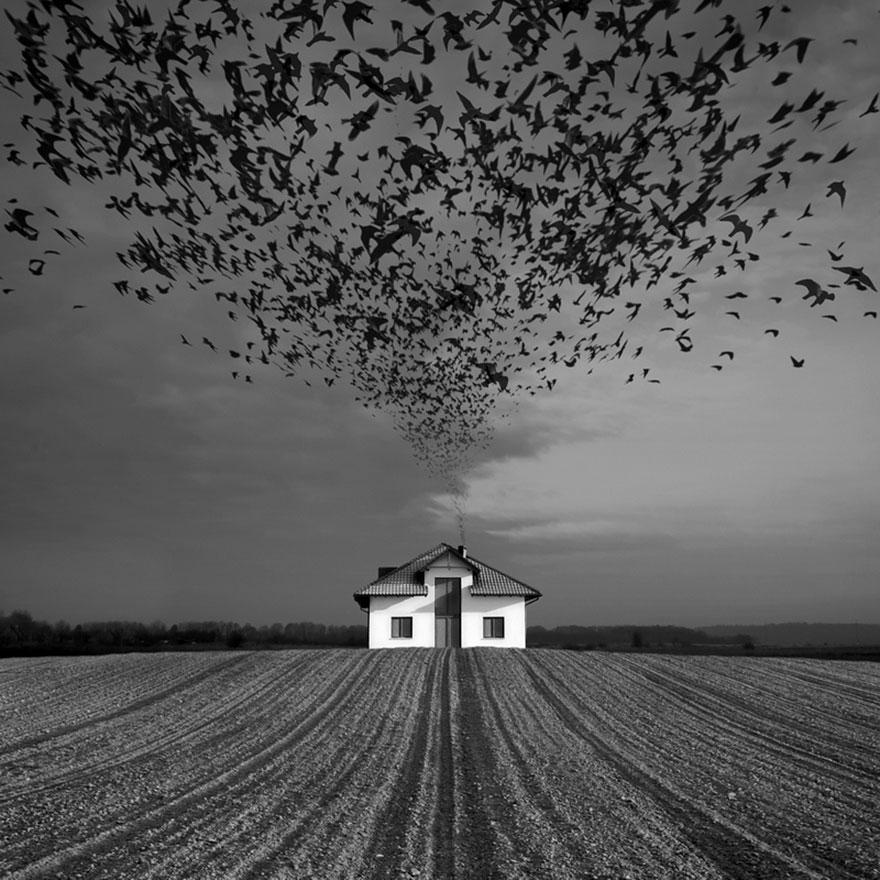 surreal-photo-manipulation-dariusz-klimczak-20