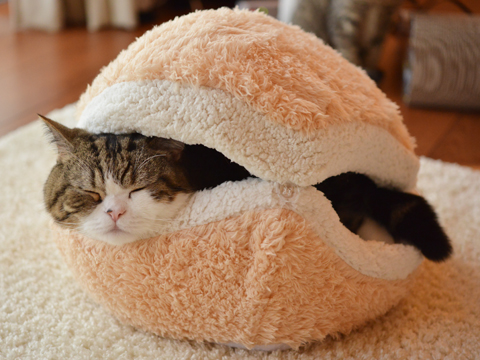 cat-burger-bed-maru-6