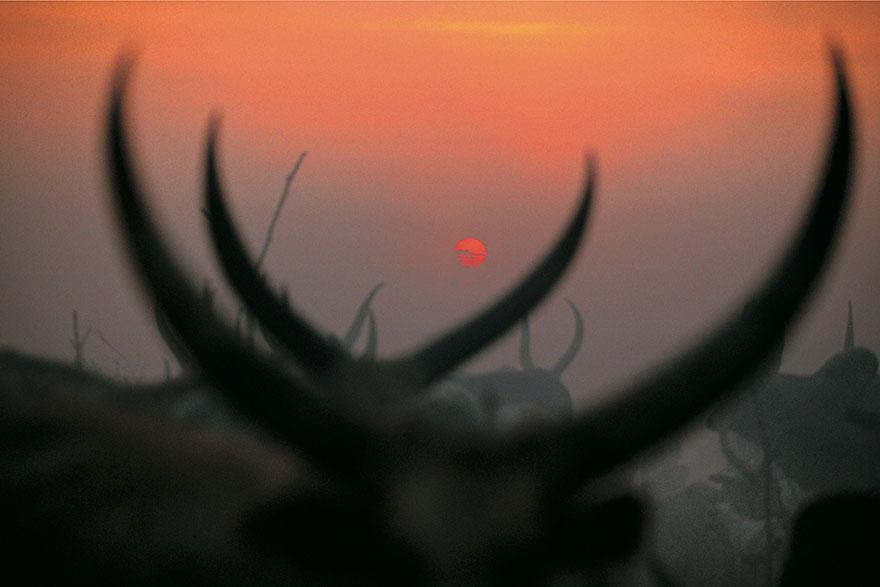 dinka-tribe-sudan-africa-carol-beckwith-angela-fisher-2