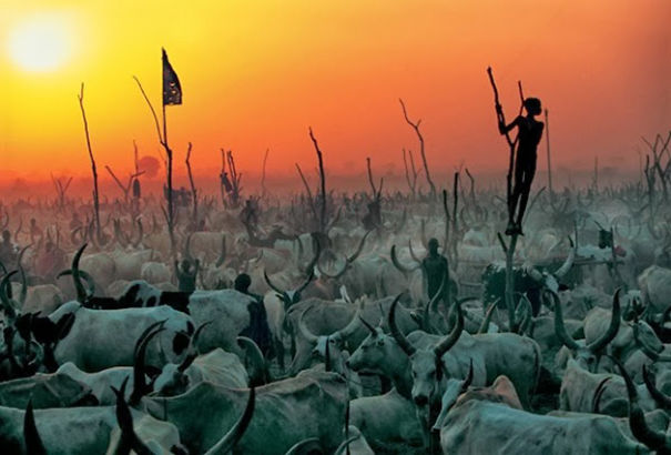 Dinka Cattle Camp, South Sudan By Carol Beckwith and Angela Fisher