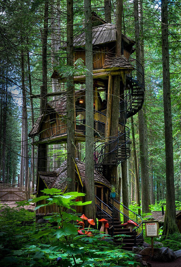 Three Story Treehouse In British Columbia Canada