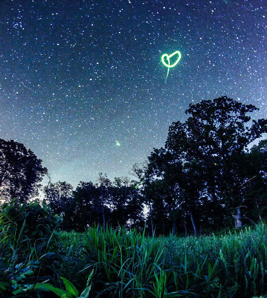 fireflies-time-lapse-photography-vincent-brady-13