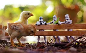 Miniature Star Wars Adventures By Zahir Batin