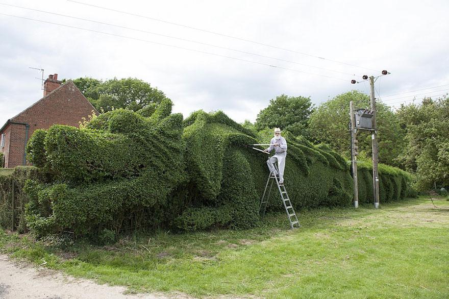 Elderly man spent 10 years turning 150 ft long hedge into for Gartengestaltung john