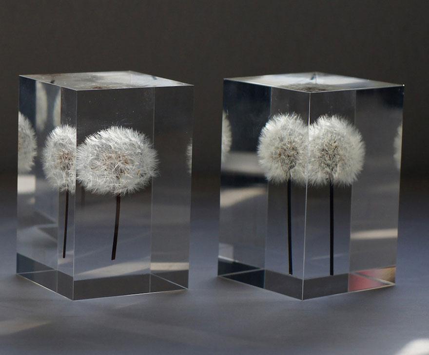 oled-dandelion-lights-takao-inoue-3