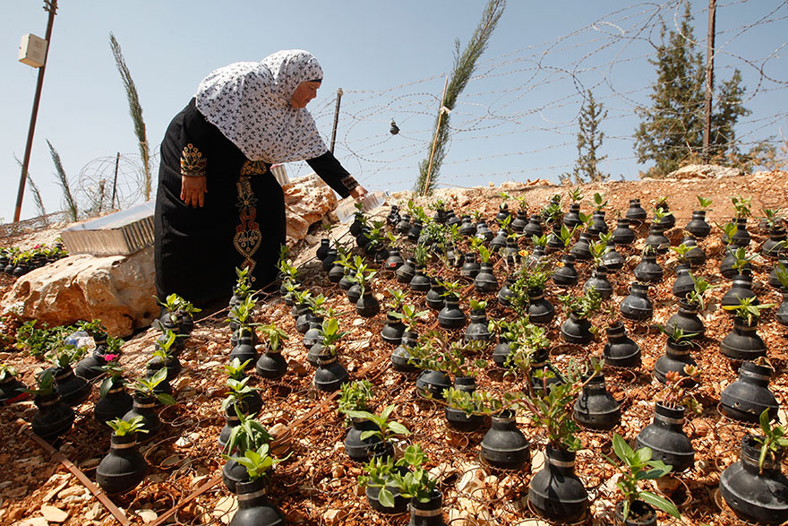 tear-gas-flower-pots-palestine-1