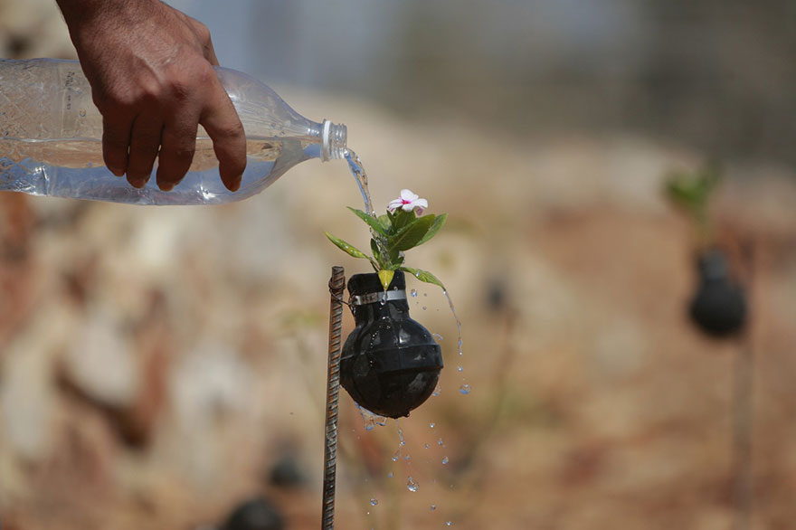 tear-gas-flower-pots-palestine-4