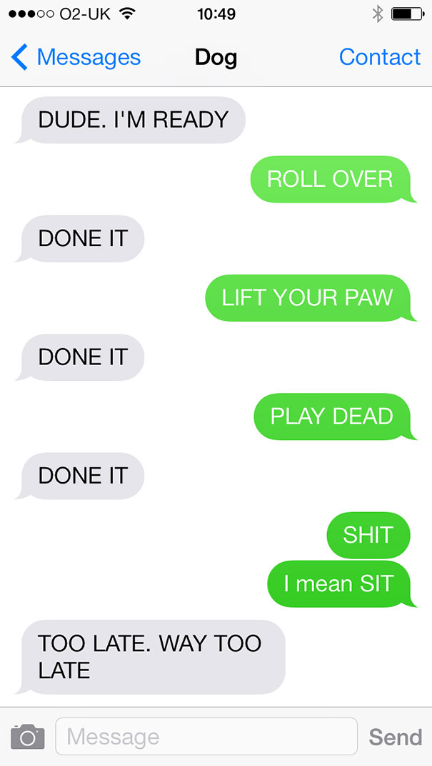 What If Dogs Could Text Hilarious Texts From Dogs Bored Panda - 10 hilarious conversations dogs have dial 911