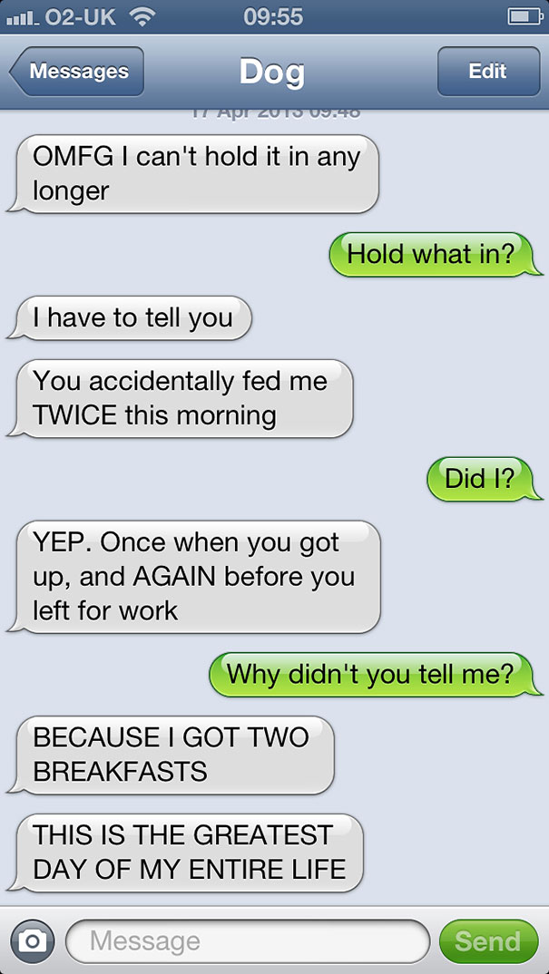 What If Dogs Could Text Hilarious Texts From Dogs Bored Panda - Dogs able text 30 hilarious texts dogs