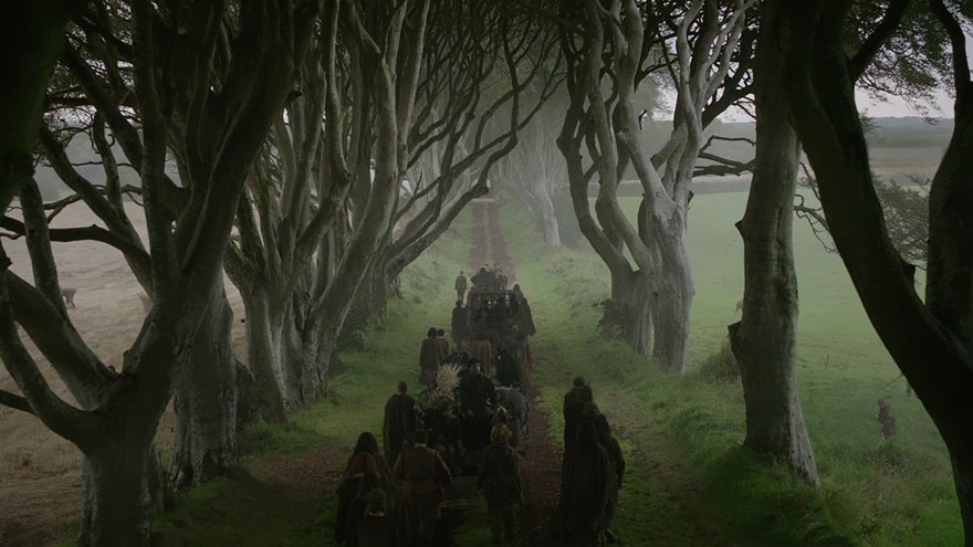 the-dark-hedges-tree-tunnel-15