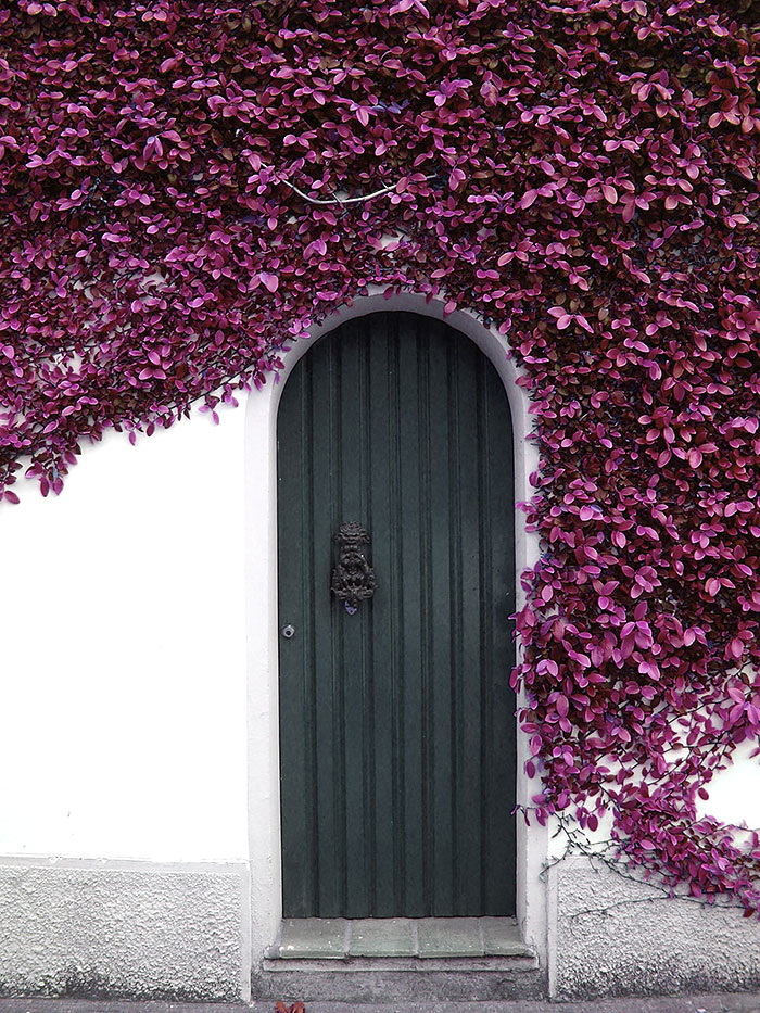 Sardinia Italy & 30 Beautiful Doors That Seem To Lead To Other Worlds | Bored Panda Pezcame.Com
