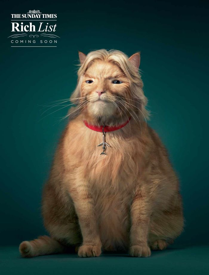 funny-ads-with-animals-17
