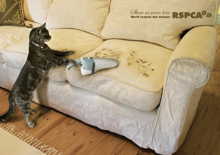 funny-ads-with-animals-48