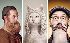25 Cute And Funny Print Ads Starring Animals