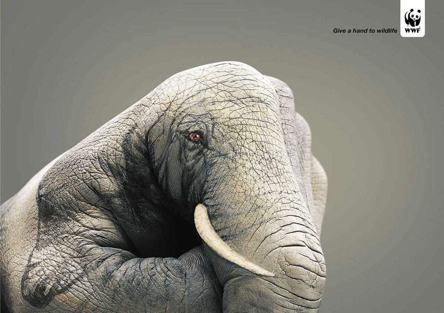 33 Powerful Animal Advertisement Examples That Tells The Uncomfortable Truth