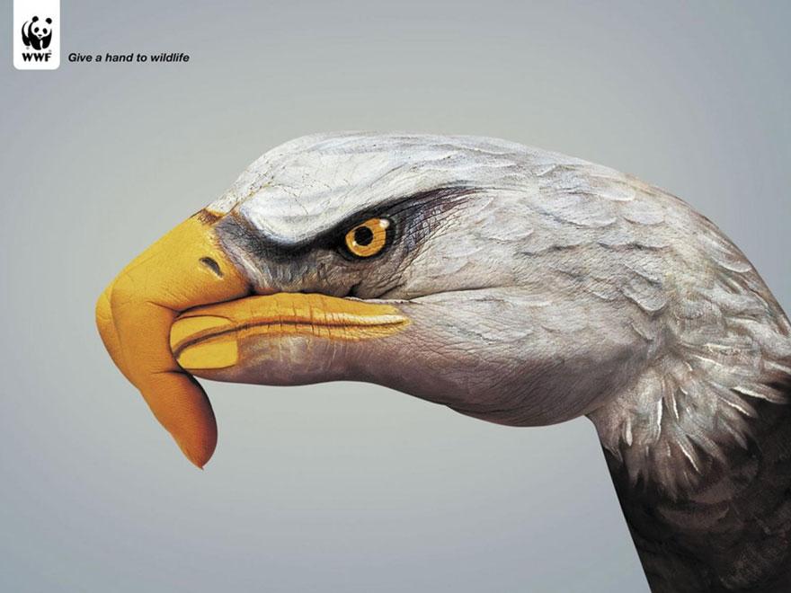 public-social-ads-animals-14