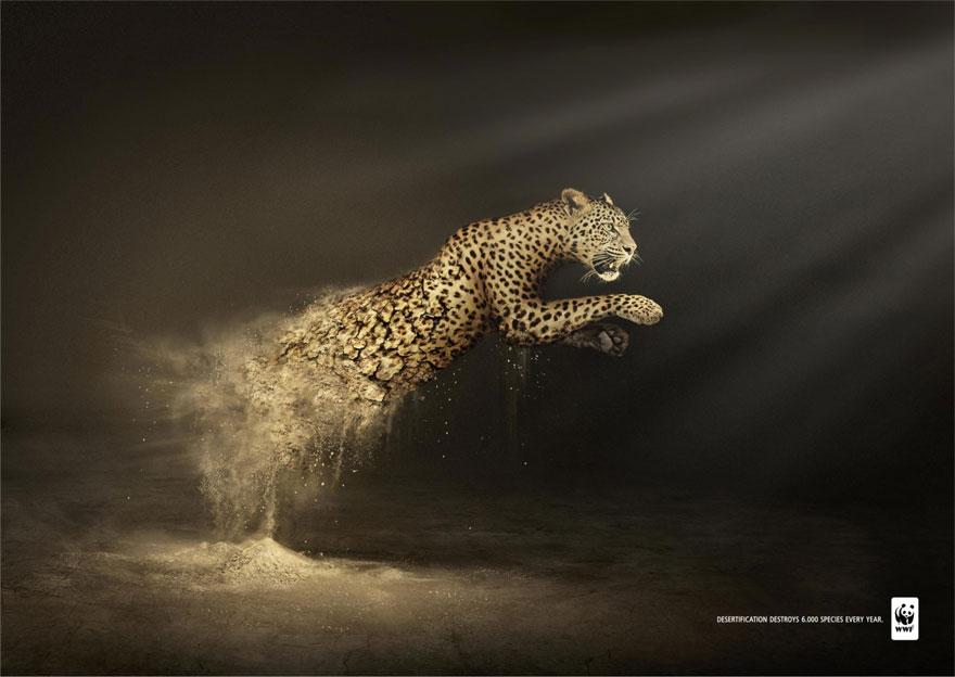 Powerful Animal Ads - Public Interest Public Awareness Ads
