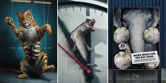 33 Powerful Animal Advertisement Examples That Tells The