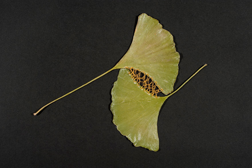 stitched-leaves-embroidery-hillary-fayle-6