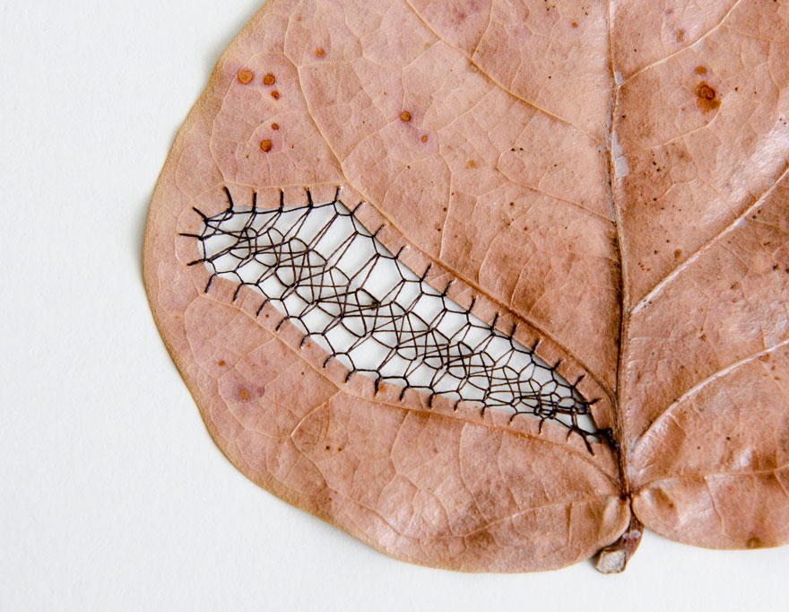 stitched-leaves-embroidery-hillary-fayle-8