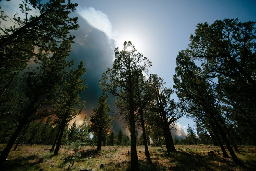 wildfire-bend-wedding-photo-josh-newton-12