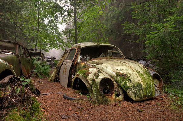This traffic jam was stuck in belgian forest for 70 years for Garage renault fayence