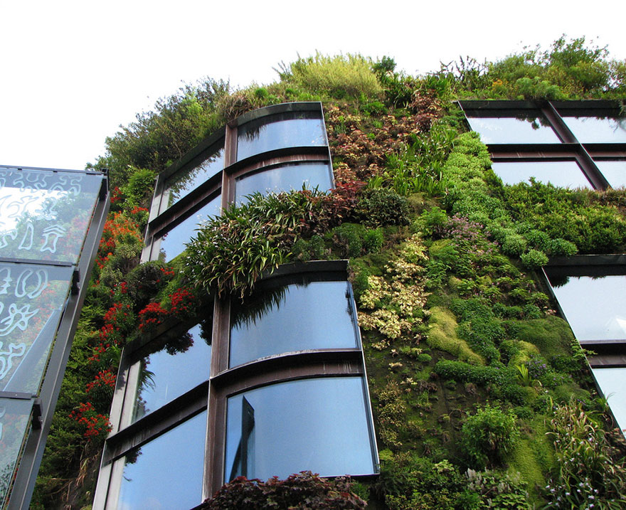 Roof Design Ideas: 24 Green Design Ideas Inspired By Nature