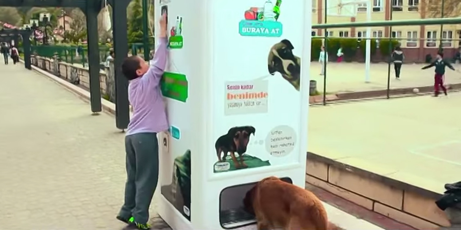 This Vending Machine Takes Bottles And Gives Food To Stray Dogs In Exchange