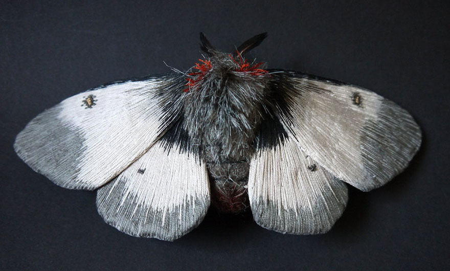 textile-sculptures-insects-moths-butterflies-yumi-okita-12