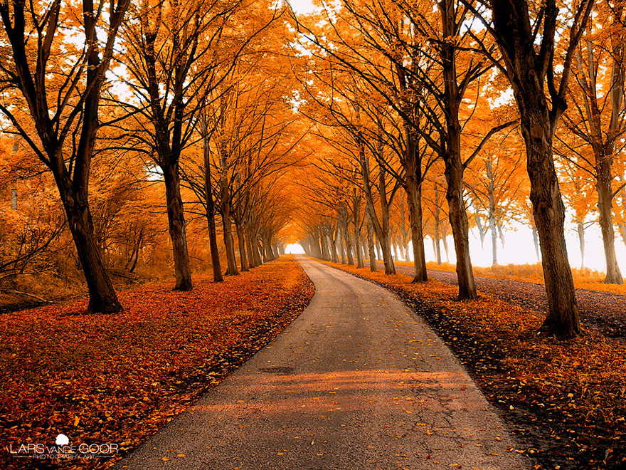 28 magical paths begging to be walked bored panda