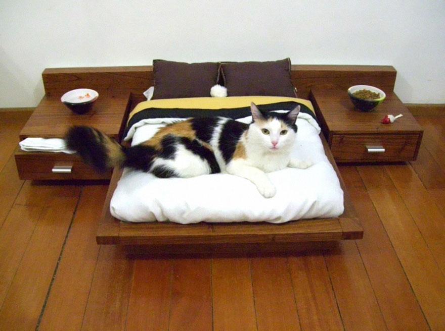 moveis-para-gatos-03