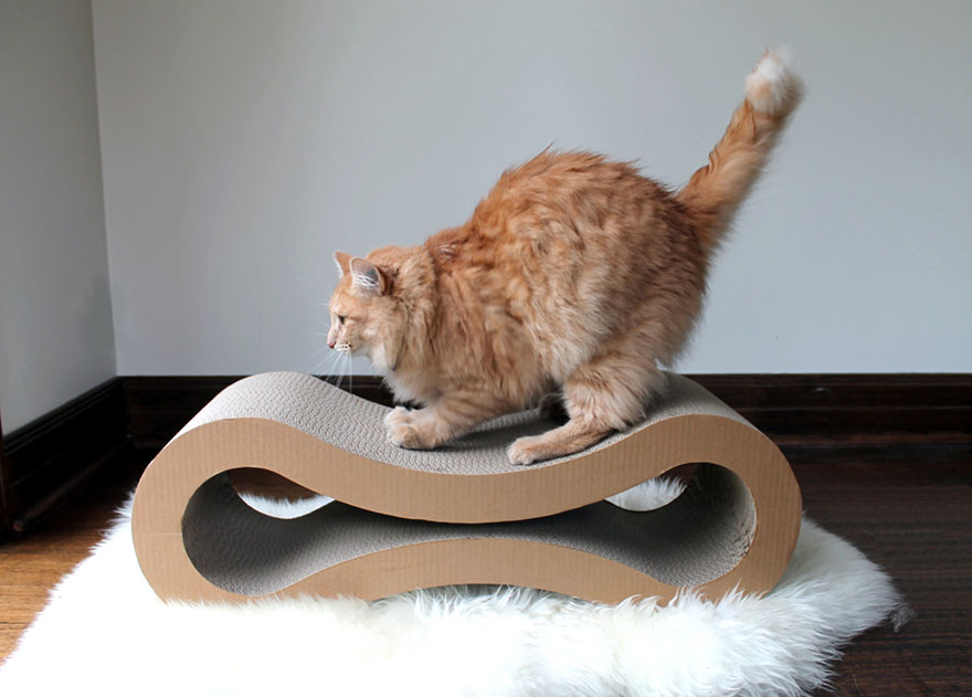 Miraculous 25 Awesome Furniture Design Ideas For Cat Lovers Bored Panda Pabps2019 Chair Design Images Pabps2019Com