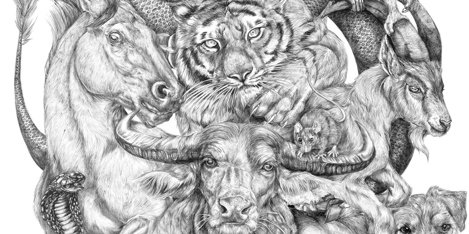 19 Year Old Artist Spent Her Summer Drawing This Epic Chinese Zodiac