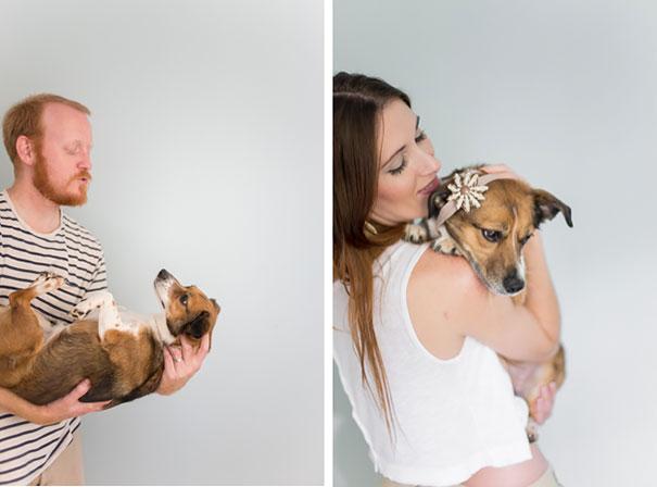 dog-baby-photos-snuggles-count-it-joy-jamie-clauss-27