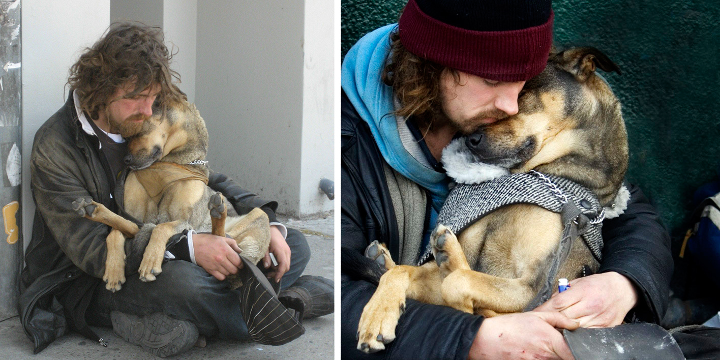 dogs and their relationship with humans