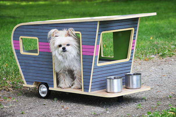 inventions-for-dog-lovers-14-1
