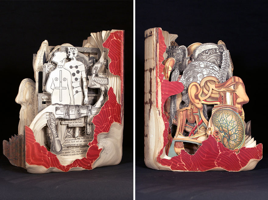 paper-sculpture-book-surgeon-brian-dettmer-37
